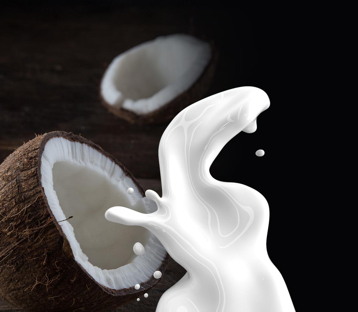 My Five Most Favorite Asian Cooking Ingredients - Coconut milk